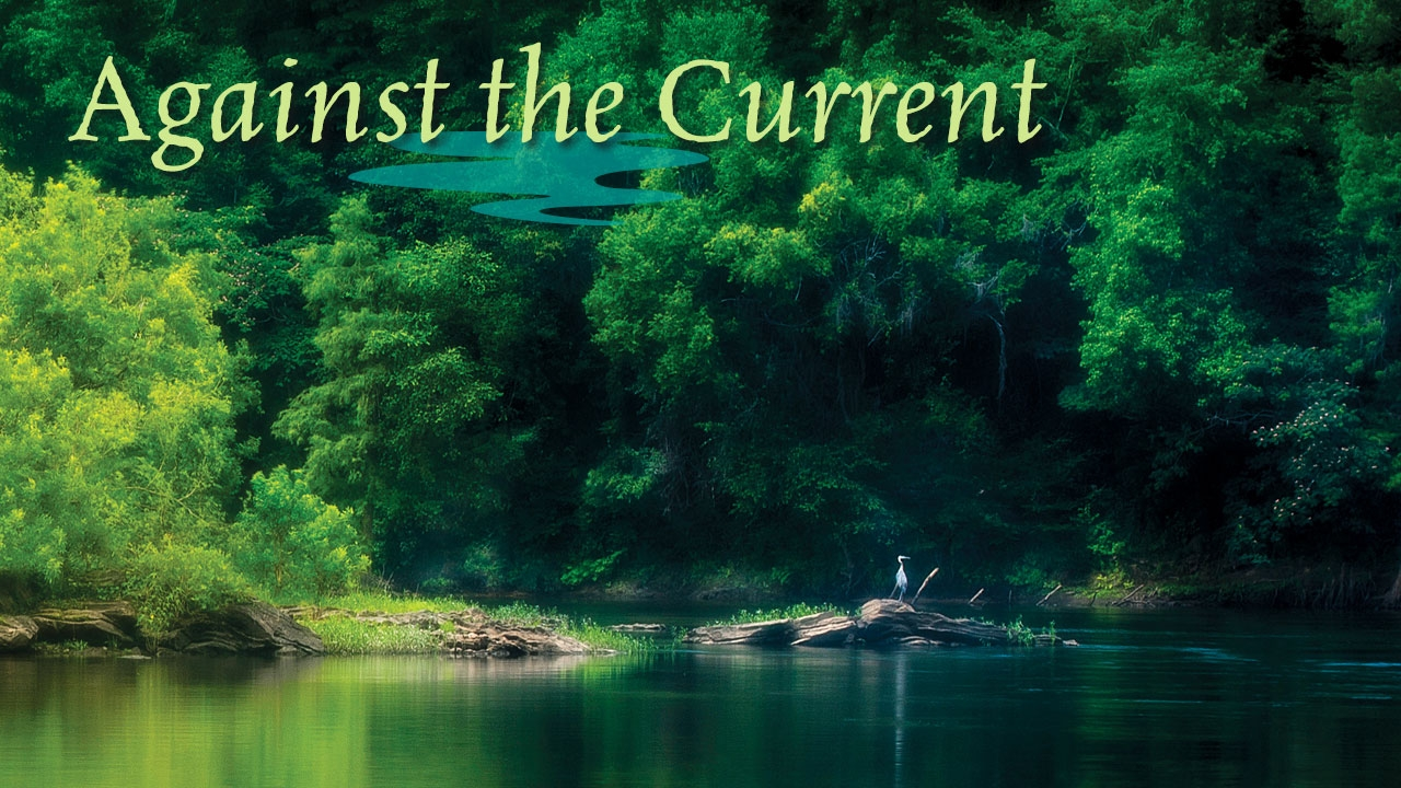 Photo of Coosa River with title: Against the Current